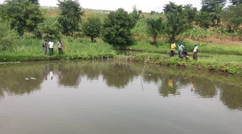 Field visit by Help Channel  Staff for youth engaged in fish farming.